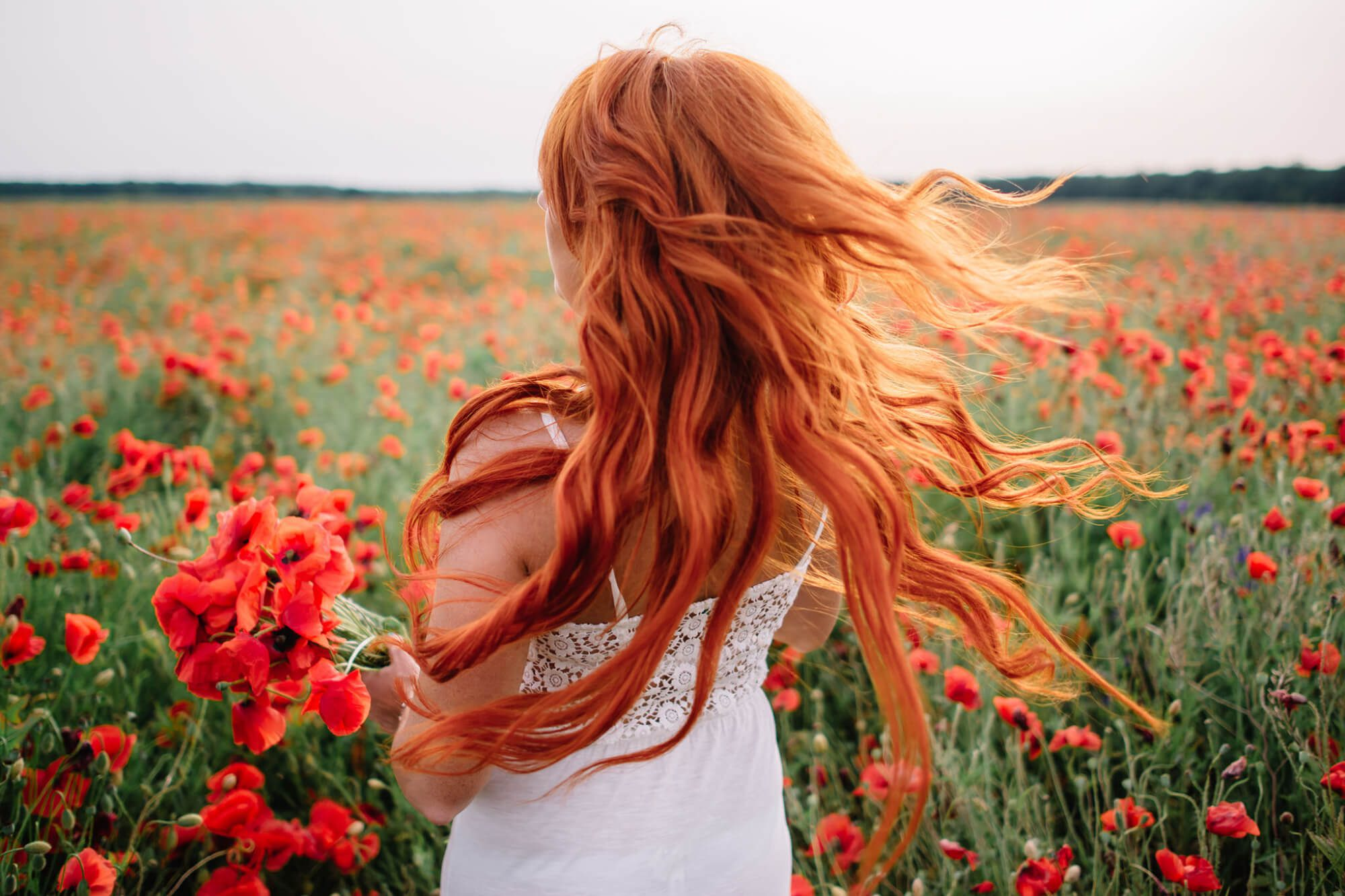 Sunday Salon: Beautiful young red-haired woman in poppy field with flying hair.